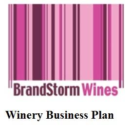 Buy business plan pro 2008