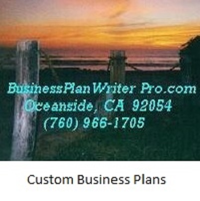 custom business plan Whether you are a student, a professional or an entrepreneur, we can write a  professional business plan to suit your individual needs our custom written.